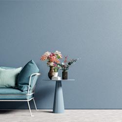 Interior Colors