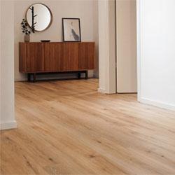 Floor Varnishes